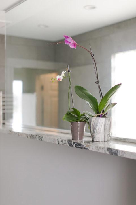 master bath orchid flower shelf, Bathroom Floor: Caesar Slab 12x24 tile color is Silver (Porcelain) Shower floor: 12x24 Stone Peak Sky tile, color: cloudsky (Porcelain) Shower Walls: Caesar Slab 12x24 tile color is Silver,Jeeves Curved Heated Towel Jack, heated towel rack in shower, modern towel rack,