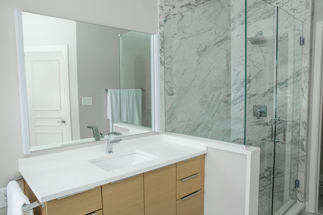 Contemporary Master Bath Vanity Shower